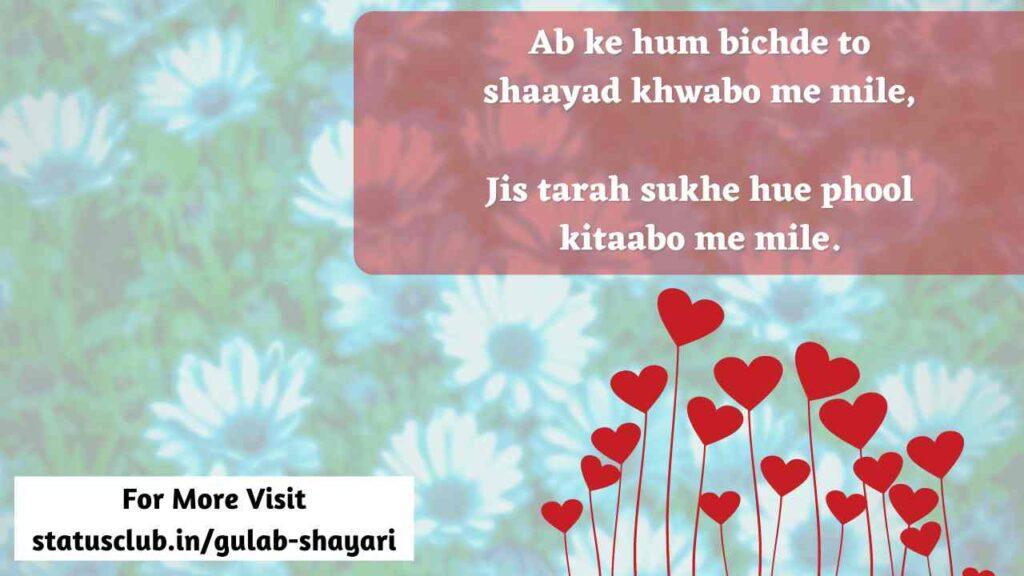 gulab shayari hindi