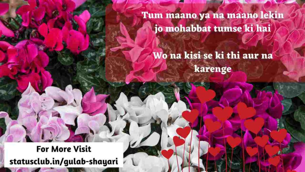 love  shayari for messages