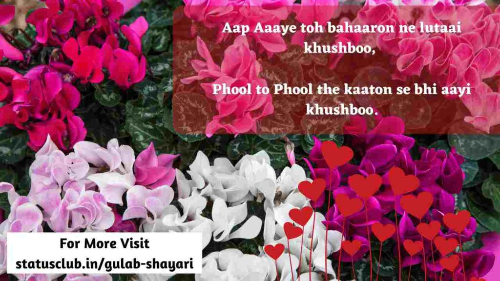 love  shayari in hindi for instagram messages